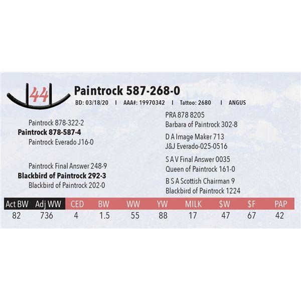Paintrock 587-268-0