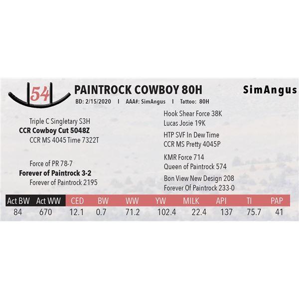 PAINTROCK COWBOY 80H