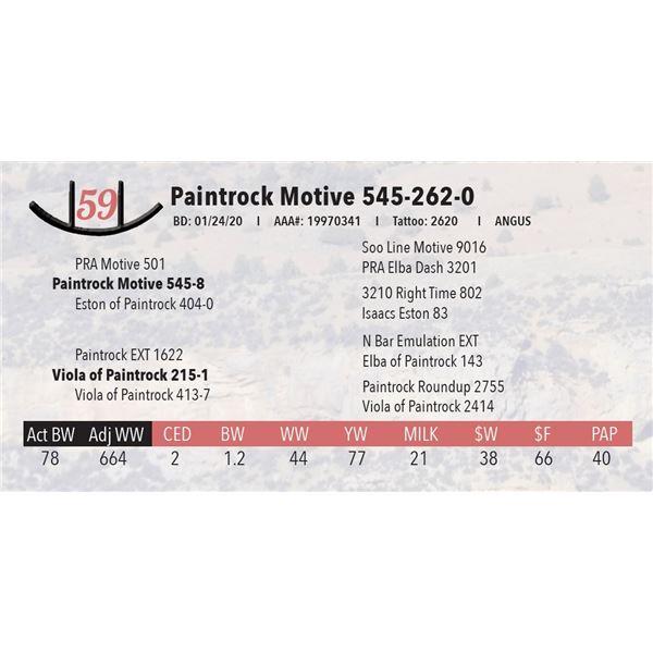 Paintrock Motive 545-262-0