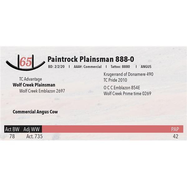 Paintrock Plainsman 888-0