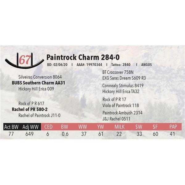 Paintrock Charm 284-0