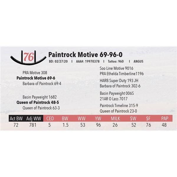 Paintrock Motive 69-96-0