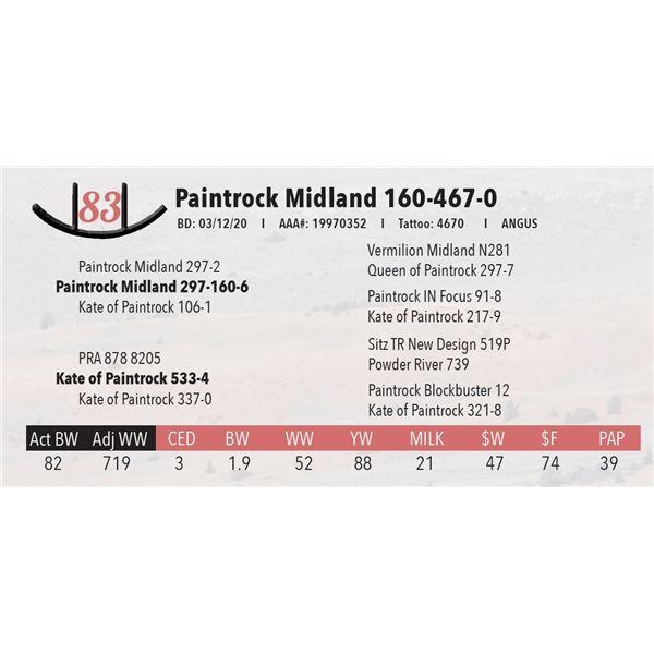 Paintrock Midland 160-467-0