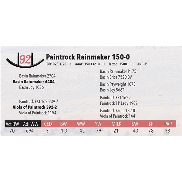 Paintrock Rainmaker 150-0