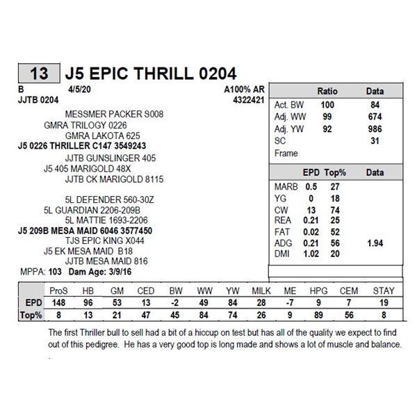 J5 EPIC THRILL 0204