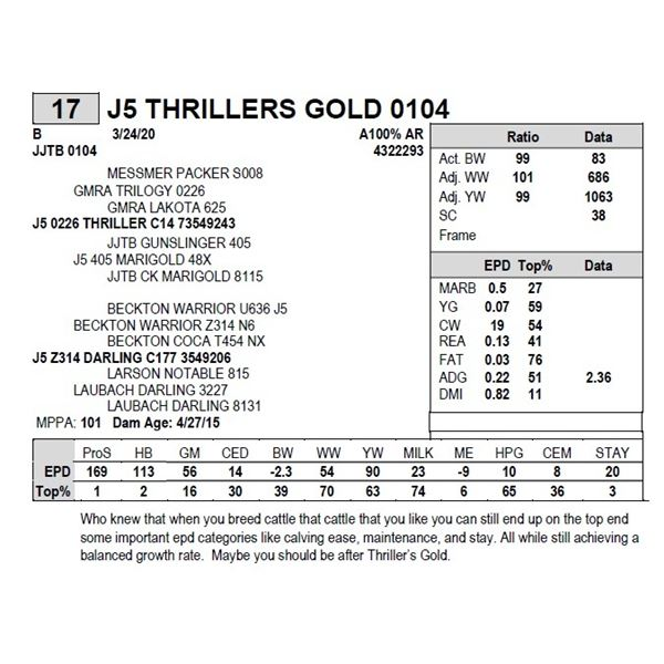 J5 THRILLERS GOLD 0104