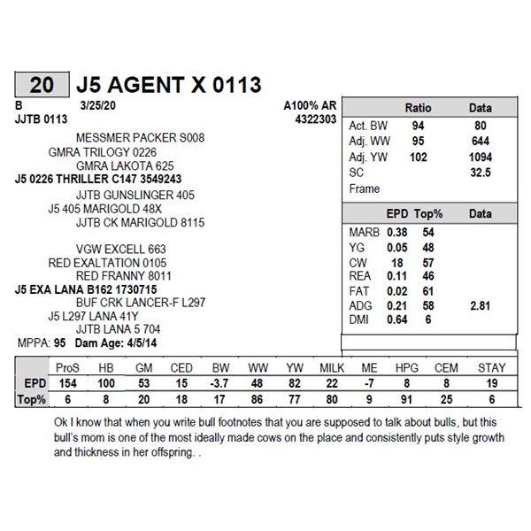 J5 AGENT X 0113