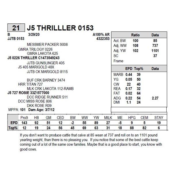 J5 THRILLLER 0153