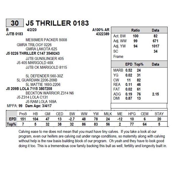 J5 THRILLER 0183