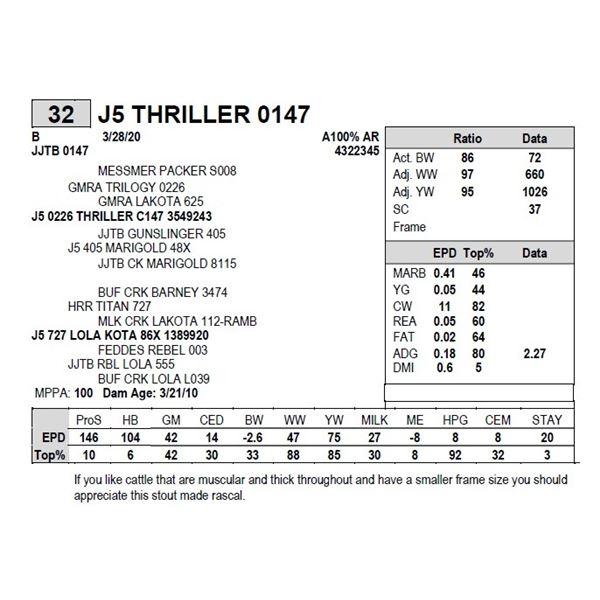 J5 THRILLER 0147