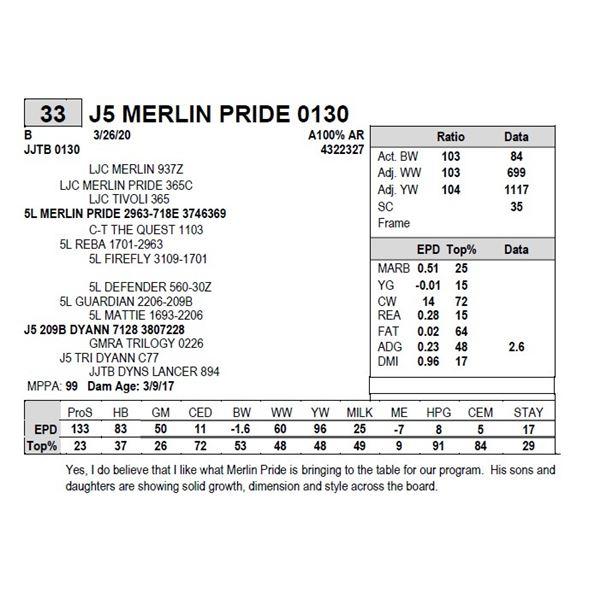 J5 MERLIN PRIDE 0130