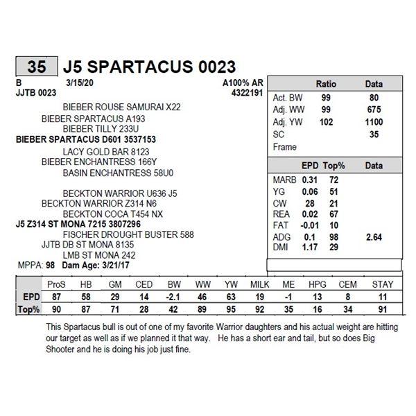 J5 SPARTACUS 0023