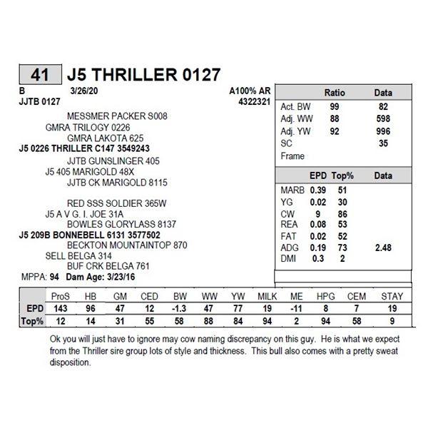 J5 THRILLER 0127
