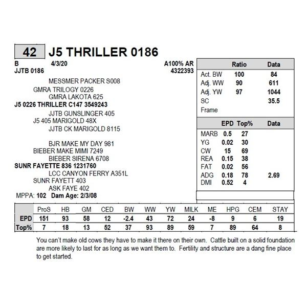 J5 THRILLER 0186