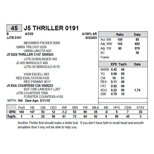 J5 THRILLER 0191