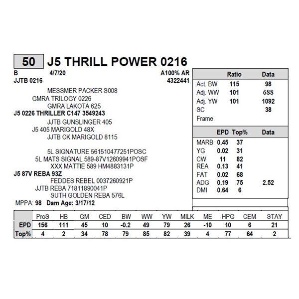 J5 THRILL POWER 0216
