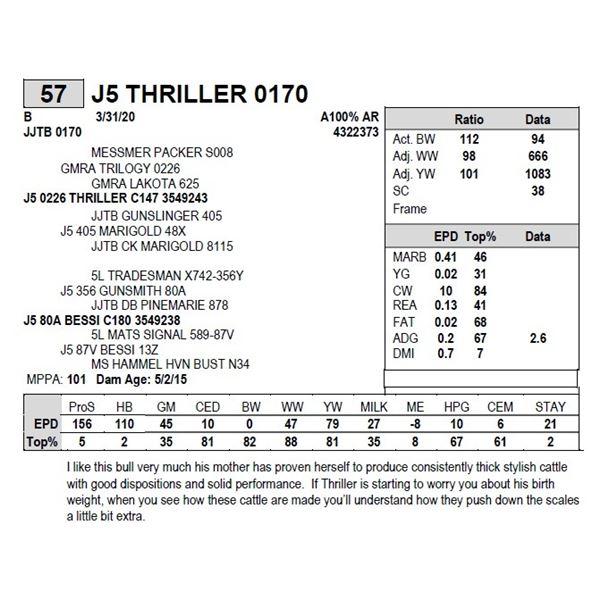 J5 THRILLER 0170