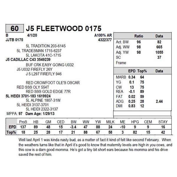 J5 FLEETWOOD 0175