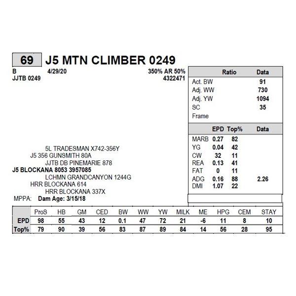J5 MTN CLIMBER 0249