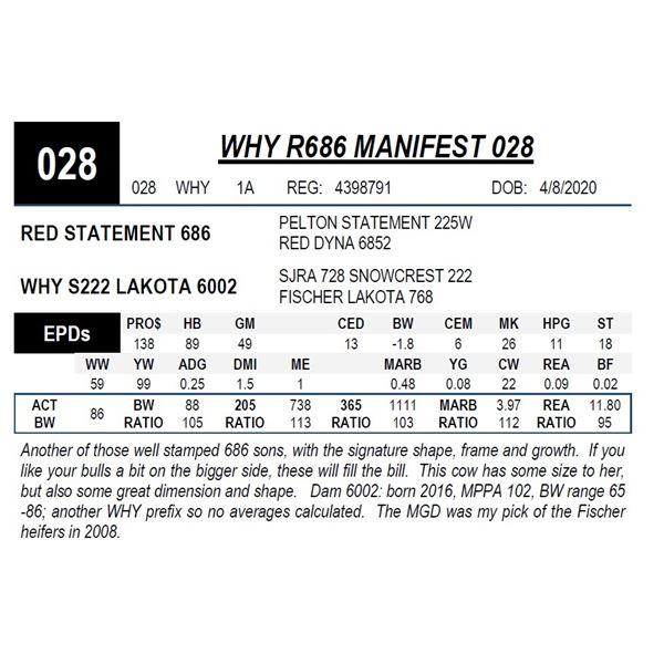 WHY R686 MANIFEST 028