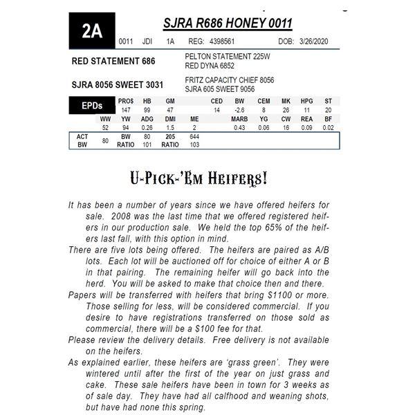 SJRA R686 HONEY 0011