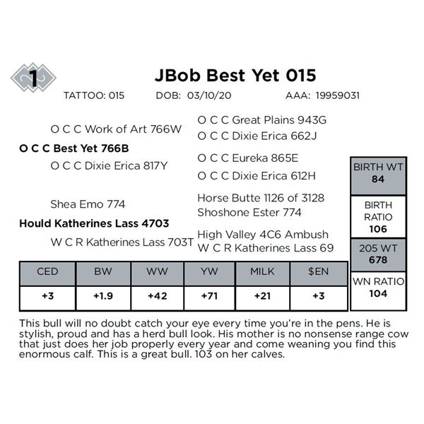 JBob Best Yet 015