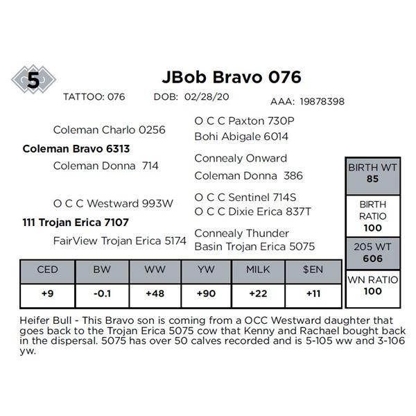 JBob Bravo 076