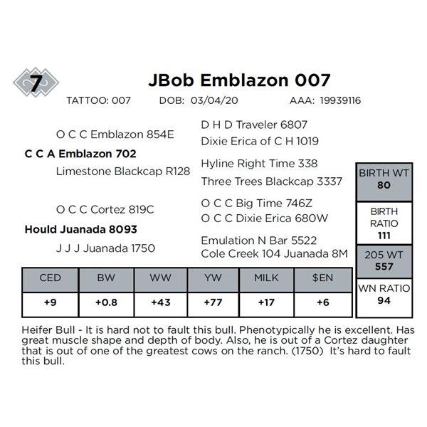 JBob Emblazon 007