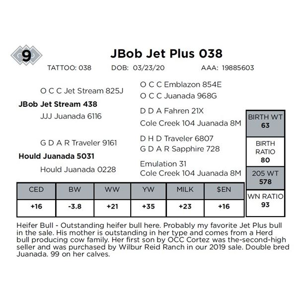 JBob Jet Plus 038
