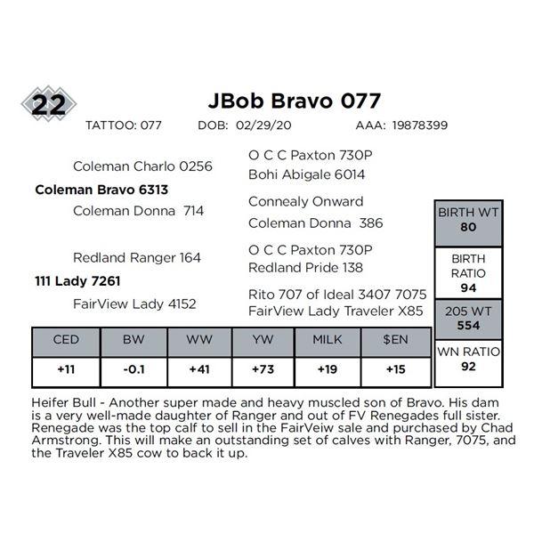 JBob Bravo 077