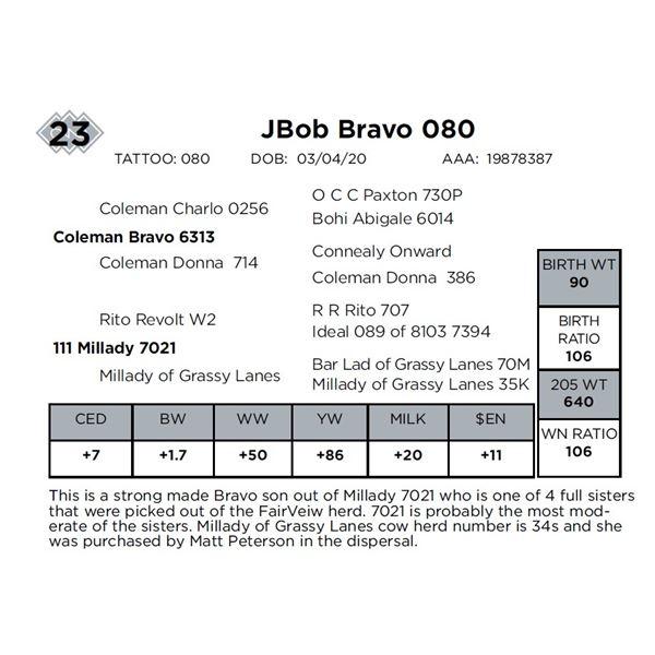 JBob Bravo 080