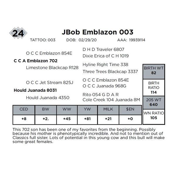 JBob Emblazon 003