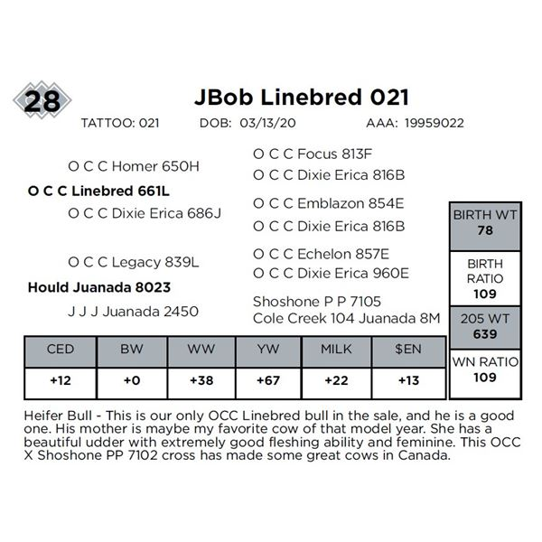JBob Linebred 021
