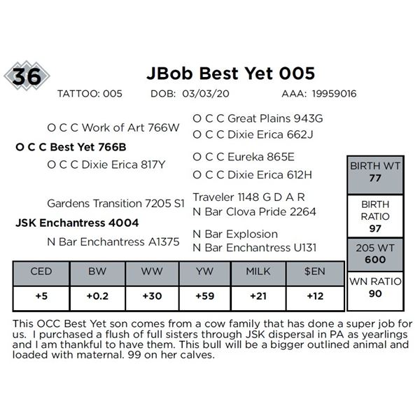 JBob Best Yet 005