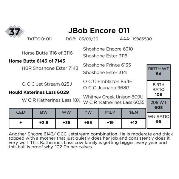 JBob Encore 011