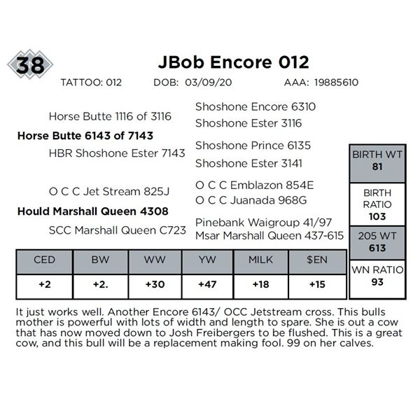 JBob Encore 012