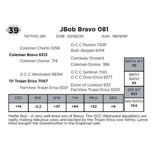 JBob Bravo 081
