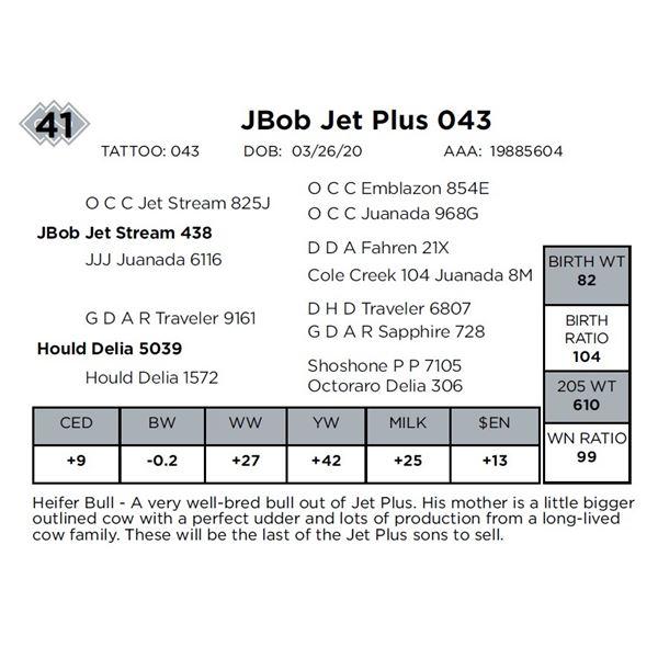 JBob Jet Plus 043