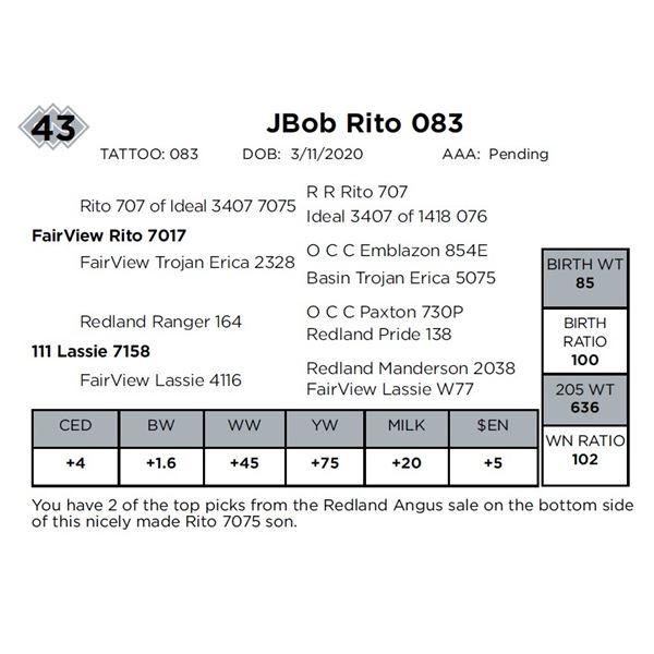 JBob Rito 083