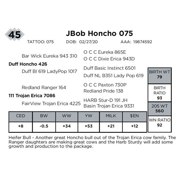 JBob Honcho 075