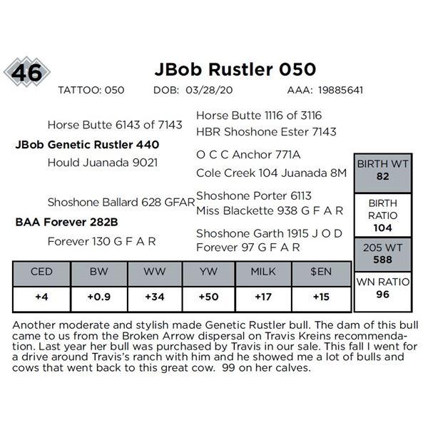 JBob Rustler 050