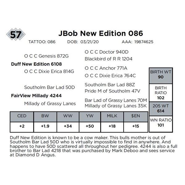 JBob New Edition 086