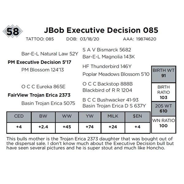 JBob Executive Decision 085