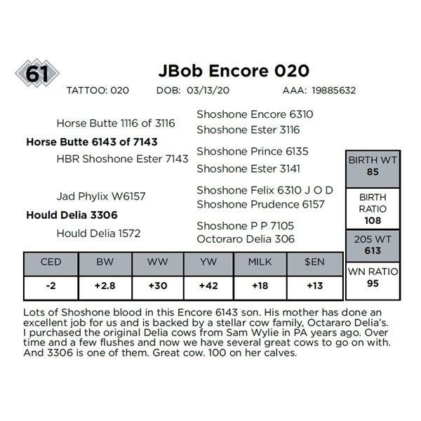 JBob Encore 020