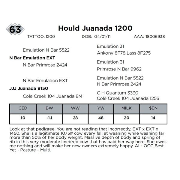 Hould Juanada 1200
