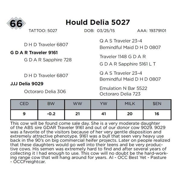 Hould Delia 5027
