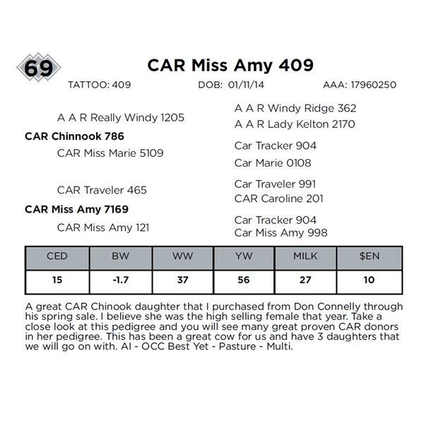 CAR Miss Amy 409