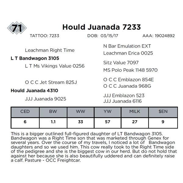 Hould Juanada 7233