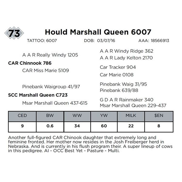 Hould Marshall Queen 6007