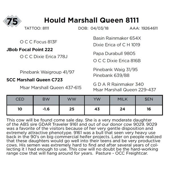 Hould Marshall Queen 8111